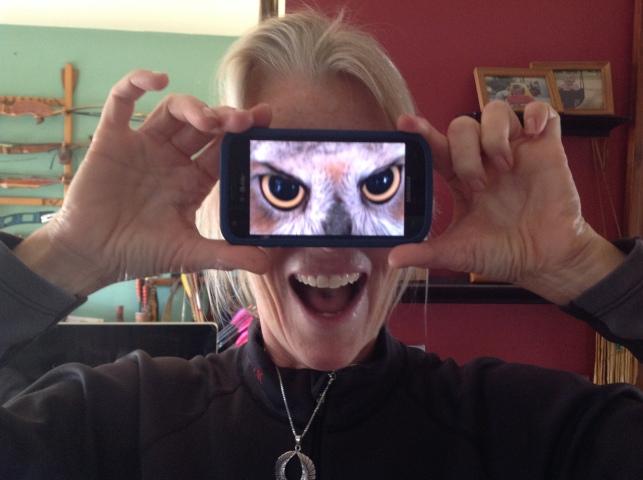 HawkEye_Predators_owl_eyes